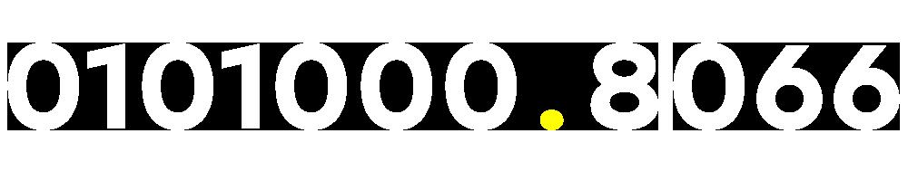 01010008066
