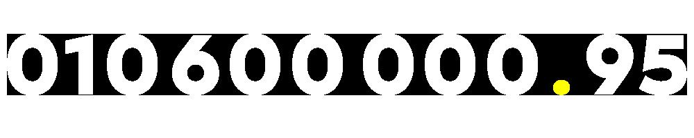 01060000095