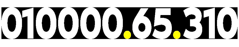 01000065310