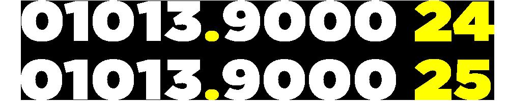 01013900024-01013900025
