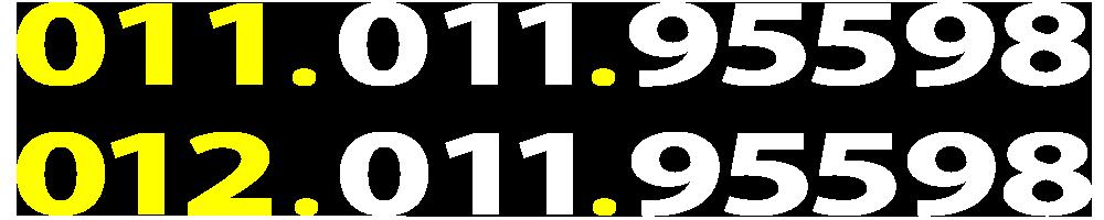 01101195598-01201195598