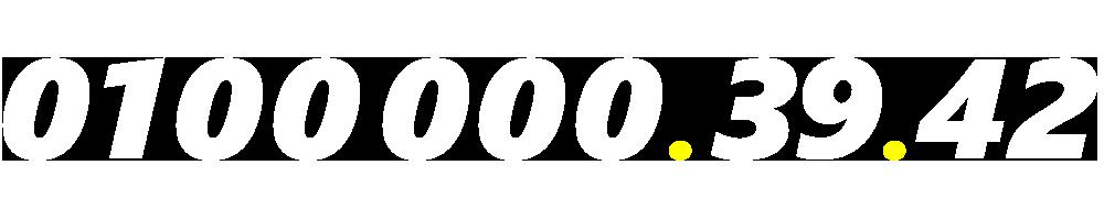 01000003942