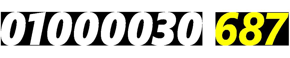 01000030687
