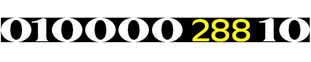 01000028810