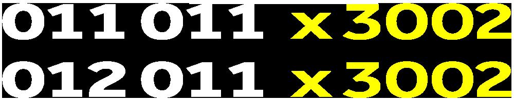 01101193002-01201193002