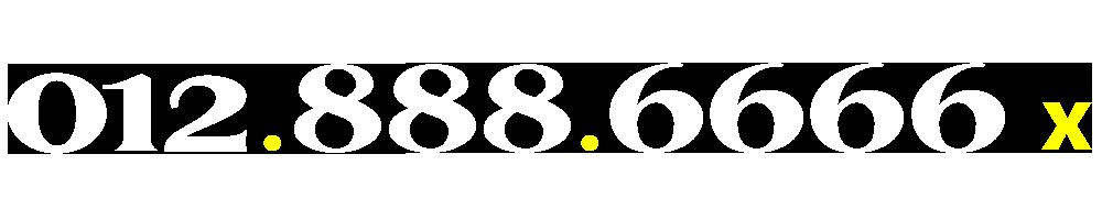 01288866667