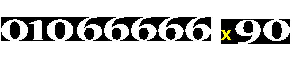 01066666590