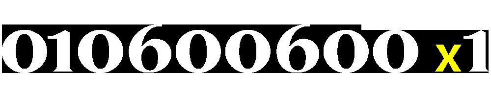 01060060041